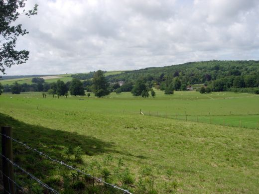 Weald and Downland